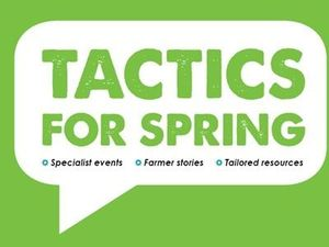 DairyNZ - Tactics for Spring